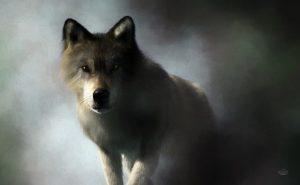 Wolf - Topaz Impression