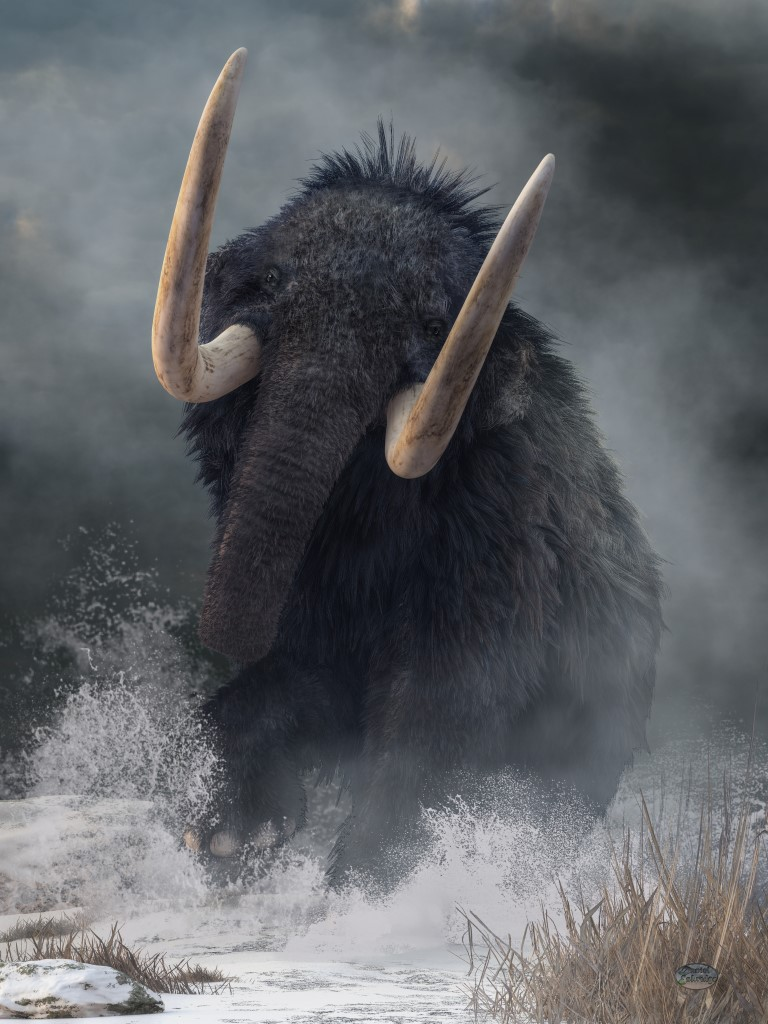 Charging Mammoth