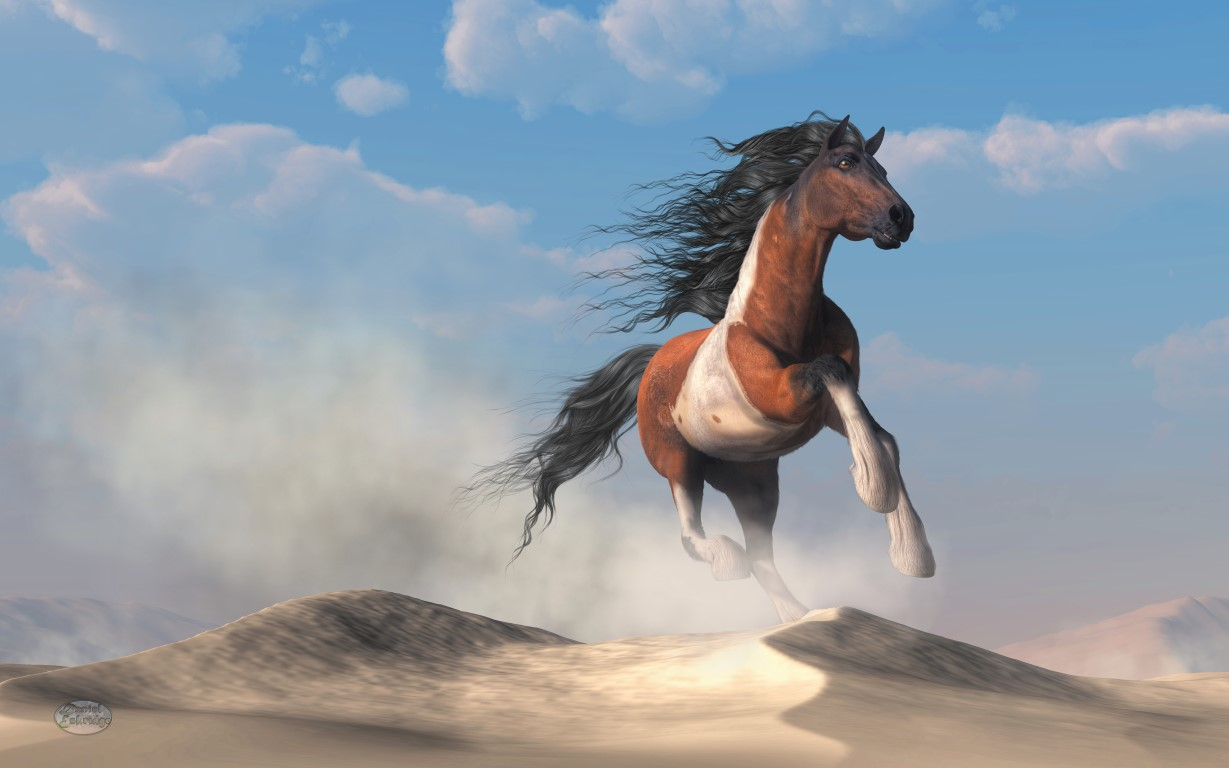 Paint Horse In The Desert
